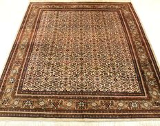 Magnificent handwoven Oriental carpet Indo Bidjar Herati, 245 x 360 cm, made in India during the end of the 20th century, very good