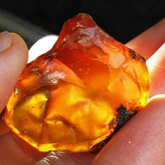 Lot Blue Amber Rough Natural - Indonesia - 20.13g (4)