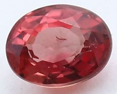 Ruby - 0.23 ct.
