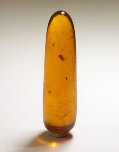 Burmite amber with insects - 35 x 10mm