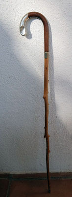 English walking stick, 19th century, with wooden cane and silver hand-grip