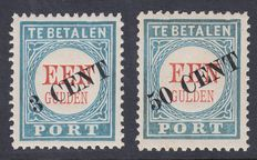 The Netherlands 1906 - Postage stamps with overprint - NVPH P27/28