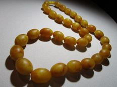 Baltic Amber necklace with olive Butterscotch yellow coloured brushed polished beads,  ca. 74 grams