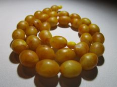 Baltic Amber necklace with olive Butterscotch coloured brushed polished beads,  ca. 74 grams