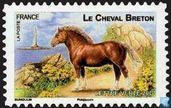 French horses