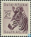 South African wildlife