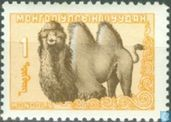 Mongolian animals
