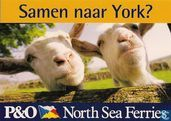 "A001040 - P&O North Sea Ferries ""Samen naar York?"""