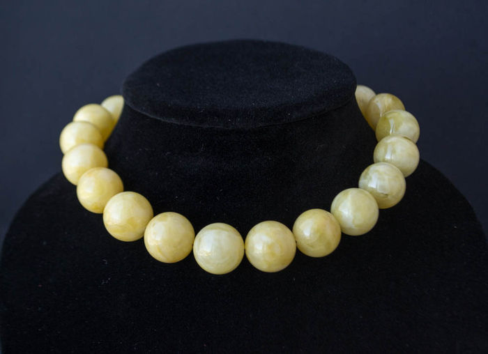 Baltic Amber necklace honey butterscotch, white color