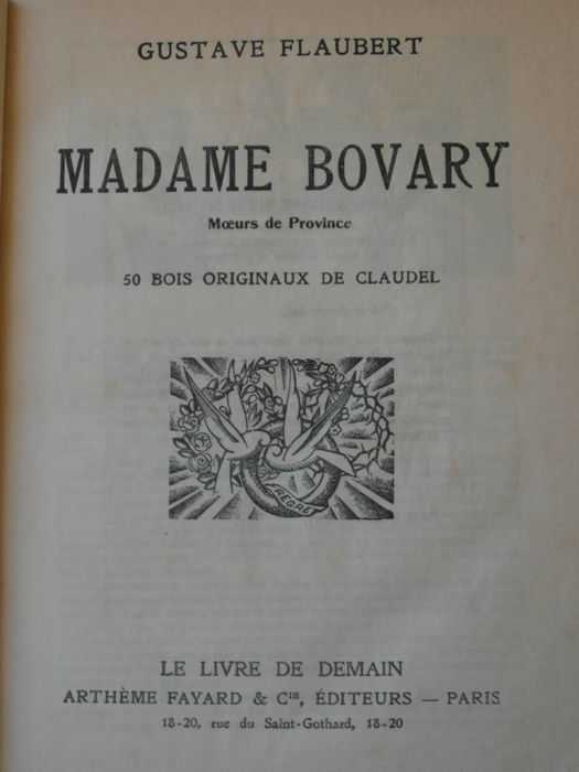 Gustave Flaubert And Madame Bovary Comparisons Essay