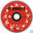 DVD / Video / Blu-ray - DVD - 12 Monkeys