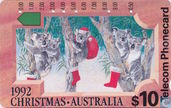 Koalas on Christmas Eve