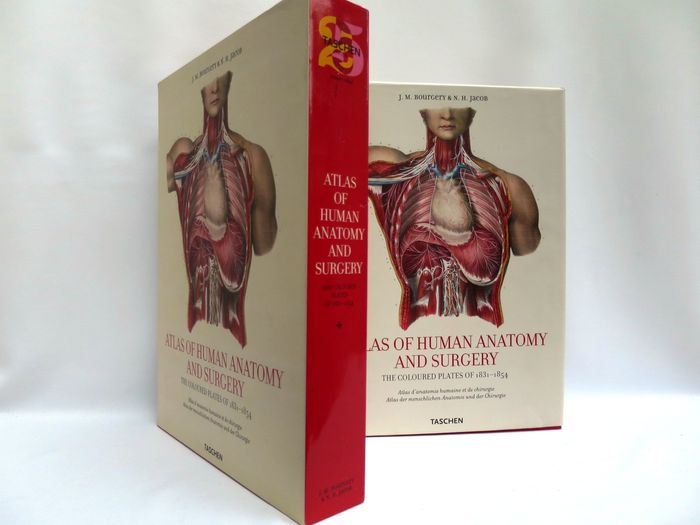 Jm Bourgery Nh Jacob Tachen Atlas Of Human Anatomy And