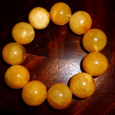 Baltic Amber Butterscotch bracelet round beads, 67 grams