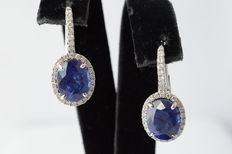 White gold 18 kt entourage earrings with diamonds and sapphire - Measurements: