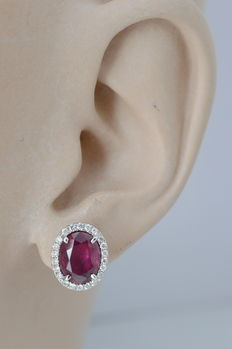 18 kt white gold entourage earrings with diamonds and rubies – Measurements: 11.4-9.5 x 17.0 mm