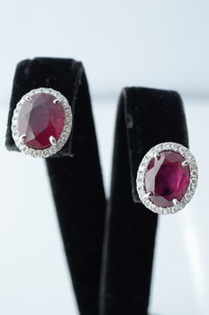 18 kt white gold entourage earrings with diamonds and rubies, measurements: 11.4-9.5 x 17.0 mm
