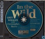 DVD / Video / Blu-ray - VCD video CD - Grey Whales with Christopher Reeve