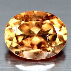 Champagne Topaz – 2.19 ct – No reserve price