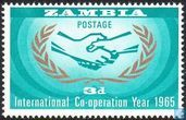 International Co-operation Year