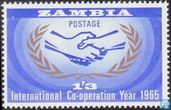 International cooperation year