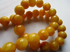 Egg yolk butterscotch colour Baltic Amber necklace,  76 gr.