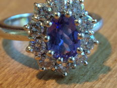 18 kt Rosette ring, 0.62 diamonds, with tanzanite – Size 18