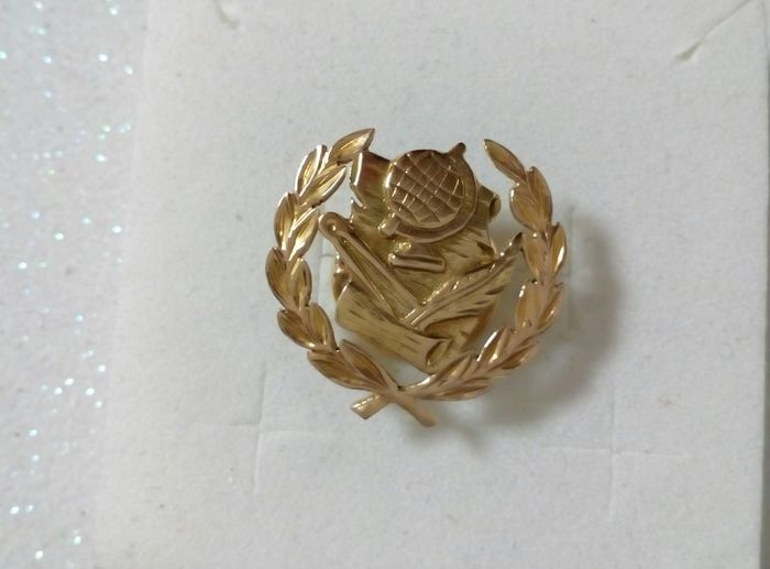 Lapel Pin with teaching profession roundel in yellow gold