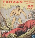 Comic Books - Tarzan of the Apes - De zwarte parel