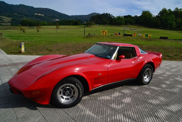 chevrolet corvette stingray c3 1979 catawiki
