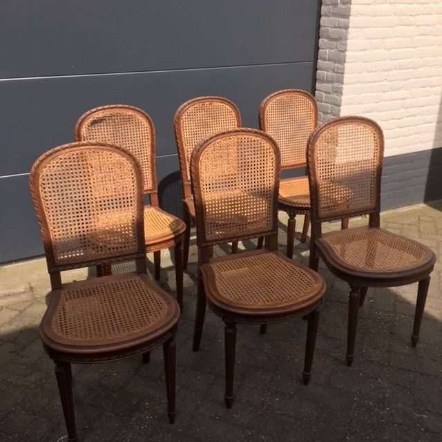 Set Of Six Oak Dining Room Chairs In Louis XVI Style Approx 1900 Catawiki