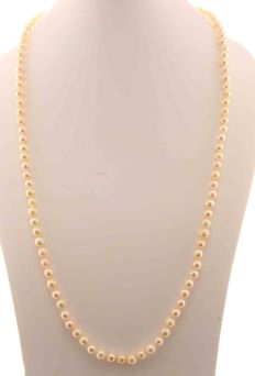 Cultured pearl necklace, 5.5-6 mm, with a 14 kt white gold bayonet clasp – 70 cm