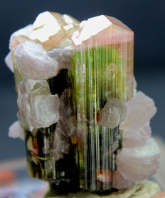Natural Pink Cap Tourmaline Crystals with Lepidolite Mica Specimen  - 39 x 31 x 21 mm - 41 gm