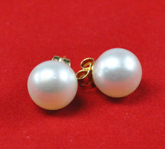 Yellow gold earrings and Australian pearls.