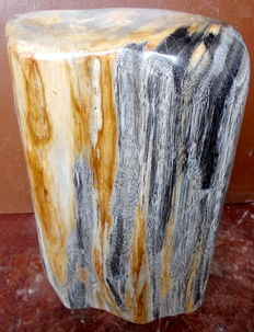 Fossil - trunk of petrified wood - 27.5 cm - 8.6 kg