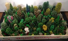 Noch/Busch/Faller H0 - Trees 180 pieces and 130 grams Iceland moss