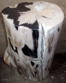 Mini side table from petrified wood - 43.2 x 22 x 18 cm - 26.2 kg