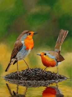 Unknown (20th century) - two robins at the water's edge