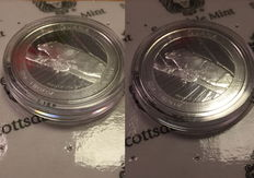 Fiji - 2 x1 Dollar - Iguana 2016 - in capsule and blister - 2 pieces 999 fine silver with certificate