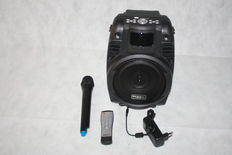 Portable sound system with wireless microphone
