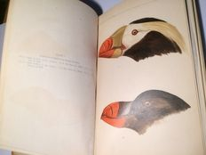 Leonhard Stejneger - Results of Ornithological Explorations in The Commander Islands and in Kamtschatka - 1885