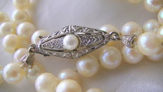 Authentic pearl necklace Akoya pearls with 835 clasp around 1920