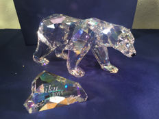 Swarovski - SCS - annual edition - Siku polar bear