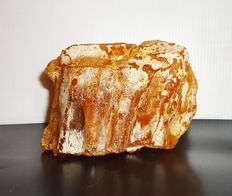 A large, rare Baltic collection amber piece