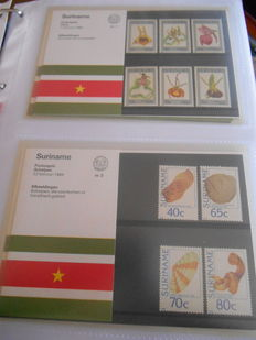 Surinam 1984/2001 - Collection of stamp booklets in 3 Davo albums