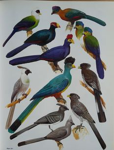 Urban et all - The Birds of Africa - 4 volumes - 1982/1992