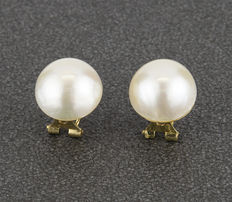 Yellow gold earrings with Mabé pearls measuring 14.00 mm in diameter