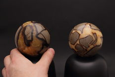 Polished natural spheres of Septarian - 7.56 and 8.02 cm - 1370 grams (2)