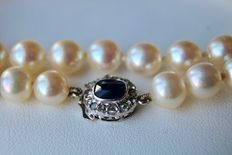 Old pearl necklace with Japanese Akoya pearls with beautiful lustre and a white gold clasp with a sapphire and rose-cut diamond of approx. 0.90 ct in total