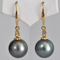 14kt gold pendant earrings with Tahitian pearls, diameter approx. 10.8mm, and 2 diamonds
